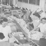 Brach workers packaging candies for the Rose line, 1948