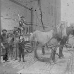 Workers with horse and cart carrying citric mud shipment, ca. 1904