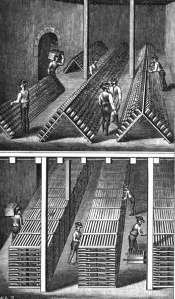 Sect Wine Company, St. Louis, Missouri, ca. 1887