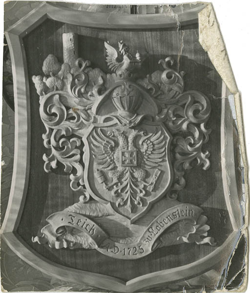 Teich family coat of arms