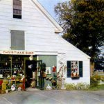 Curt Teich & Company, Inc., The Christmas Tree Shop, Yarmouth Port, Massachusetts, 1952