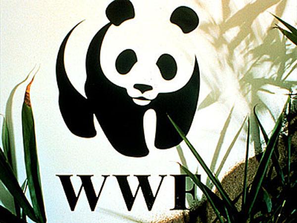 World Wildlife Fund Logo Designed by Landor & Associates