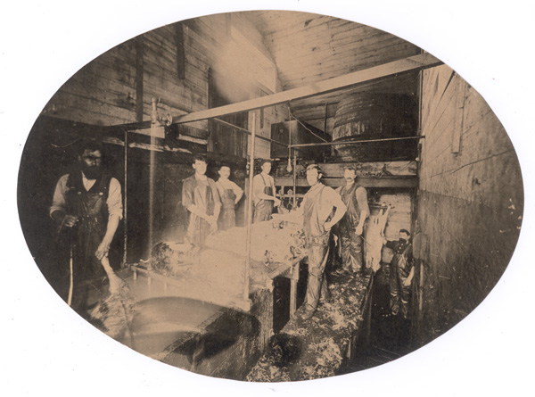 Cutting room, 1894