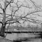 Fink Through-Truss Bridge, Flemington, NJ