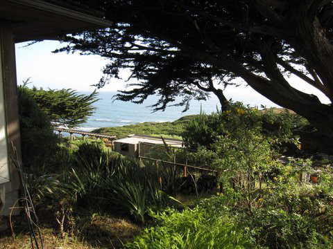 View of the Pacific ocean from the Tede family home in Bolinas