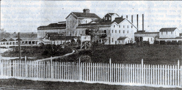 Watsonville, 1889: The largest U.S. beet sugar plant